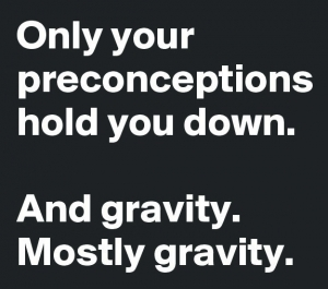 Only-your-preconceptions-hold-you-down-And-gravity